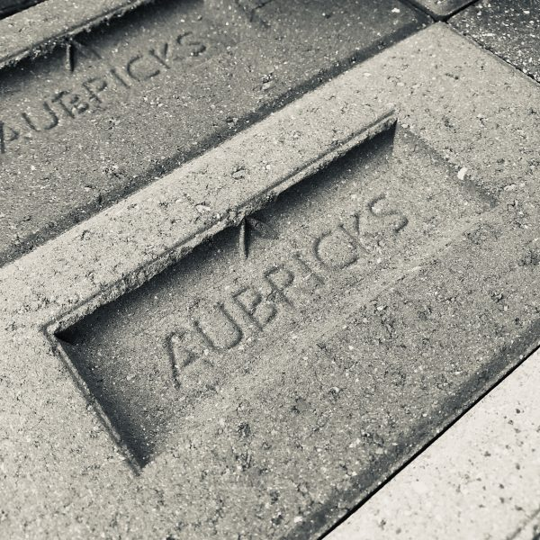 Aubricks Bricks with logo 6